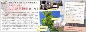 sakuramori_201610